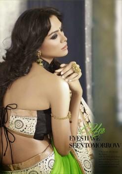 Lime Green Most Elegant Designer Saree