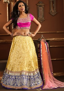 Differently Designed Dual Color Lehenga Choli