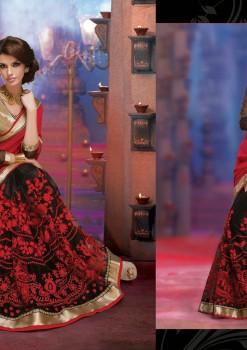 Black & Red Alluring beautiful Designer Saree