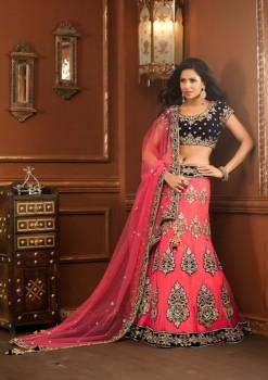 Beautifully Designed Pink And Blue Lehenga Choli